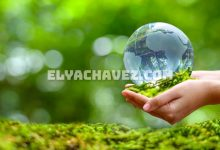 Take Climate Action Into Your Own Hands